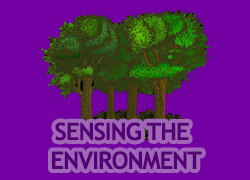Sensing the Environment Thumbnail