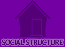 Social Structure Thumbnail